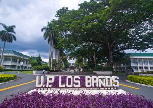 800px-University_of_the_Philippines_at_Los_Banos-Gate