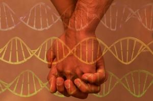 gay_genes_rect