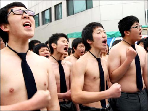 Gay koria